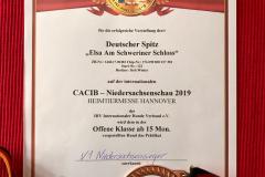 Niedersachsensieger